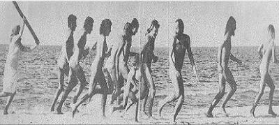 Baroña 1983,la verdad al desnudo